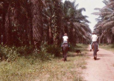 1983 Abidjan