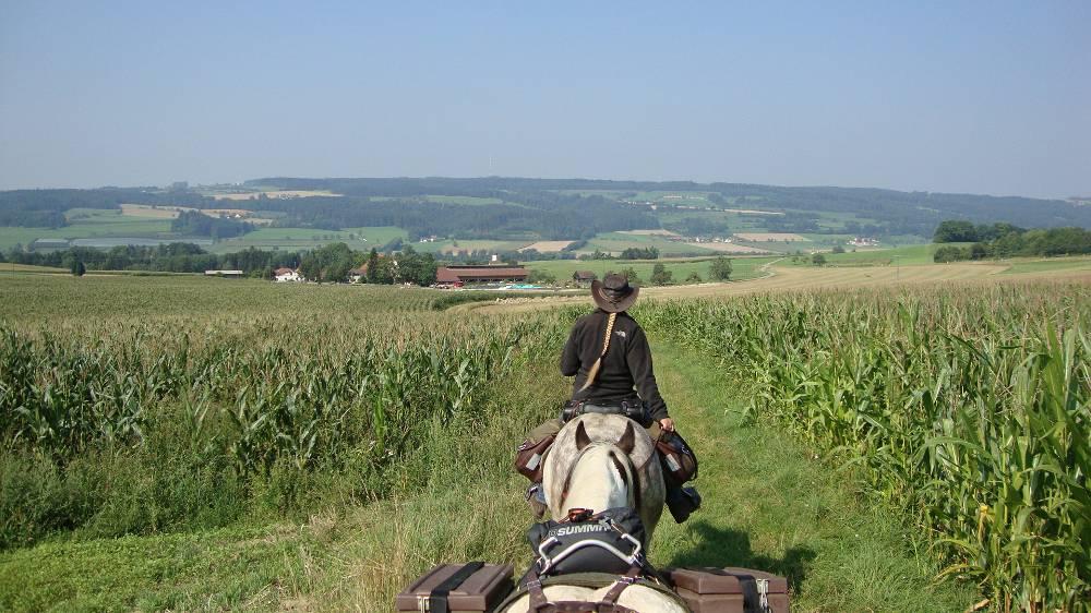 De Prague à Strasbourg : Le Bade-Wurtemberg suite