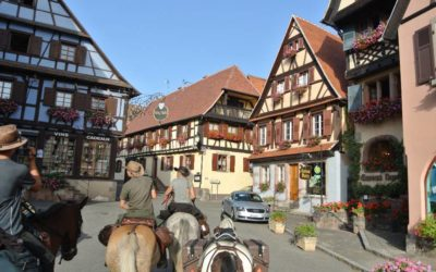 De Prague à Strasbourg : A nous l'Alsace, ses coteaux, ses taons et son Crémant